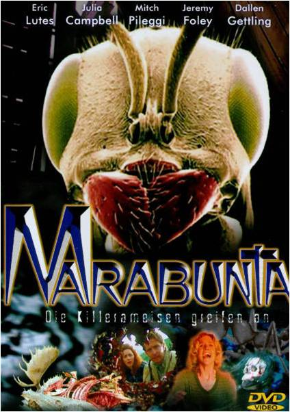 cv-marabunta-1